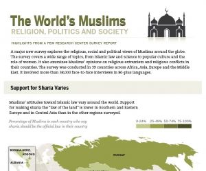 worlds_muslims_religion_politics_society